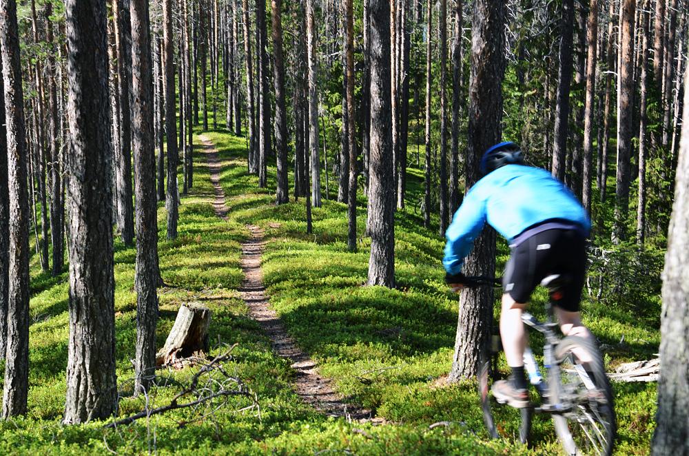Cykling Dalasjö