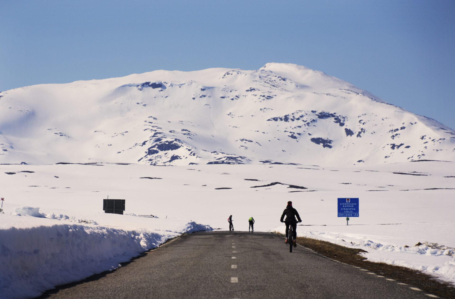 Cykling Vildmarksvägen